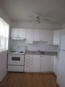 Located in the Downton Area ( 1 bedroom and bachelor)