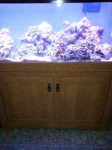55 Gallon with stand & light Kingston Kingston Area image 1