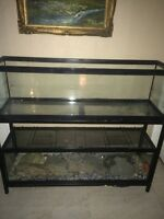 2 reptile tanks with custom stand