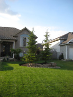 Santerra Landscaping now booking for 2018 Lawn Maintenance