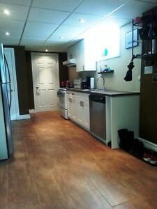 Large luxury 1 BR apartment - September 1 Lawrence & Brimley