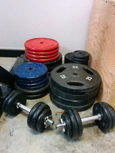 Weights, bars and bench