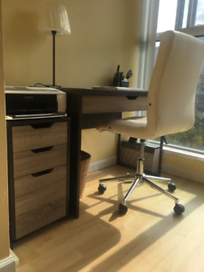 2 Toned Office Desk & Printer Storage Cabinet - GREAT CONDITION!
