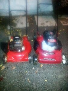 Complete lawnmower tune up special