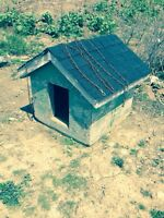 Solid Construction Dog House & 20ft of Chain