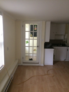 Above ground bright 2 bdrm basement apt.on quiet street west end