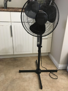 Moving Sale - Black Stand Fan