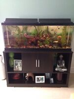 Aquarium with stand, accessories  and fish.