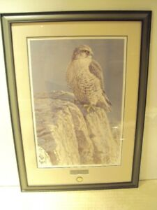 ROBERT BATEMAN - Mountain Monarch Gyr Falcon Limited Edition