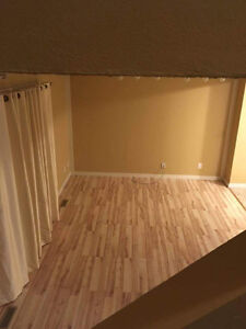 Renovated Townhouse for rent in NE Edmonton. *Free AC Units*