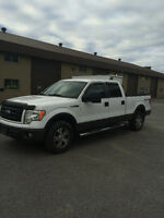 2010 Ford F-150 Fourgonnette, fourgon