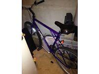 Gt trail alloy mountain bike