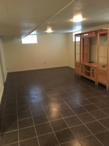 Newly renovated basement bachelor apartment available Jan1st
