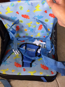 First Years Travel Booster Chair
