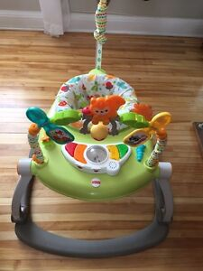 Like new jumperoo exersaucer