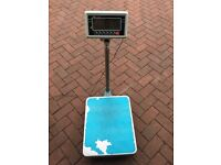 Commercial weighing scales u Scales 300KG