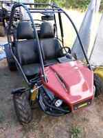 Go cart, 2 seater, 30km brand new!