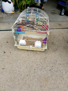 Free bird cage