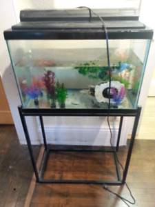 Fish tank with metal stand