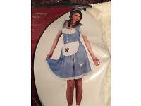 Dorothy wizard of oz fancy dress