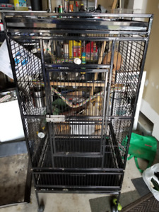 Small Parrot Cage Almost New