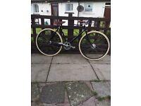 Pashley governor bike