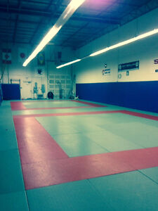 Furnished Gymnastics/Martial Arts Space Available - 403/QEW