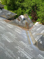 Professional shingle roof repair/replacements!