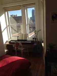 Bright room, Spectacular view, Right by Mcgill! only 550!may-jul
