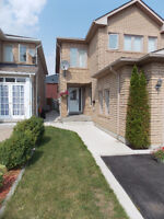 1 bedroom basement apartment for rent in Mississauga