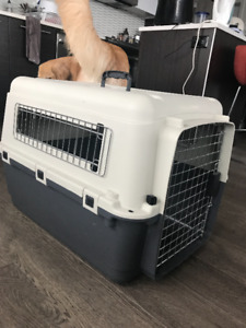 Dog Crate (Medium), Plastic Carrier (Airline Approved)