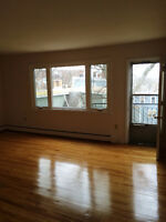 South end 1 bedroom + den, balcony and parking