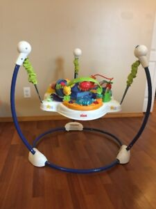 Fisher Price Ocean Discovery Jumperoo