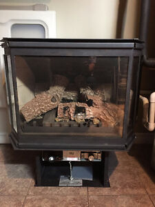 Propane Fireplace Best Offer