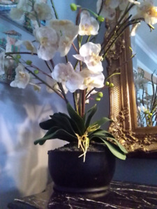 """Large Bombay pot with orchids 38"""" high"""