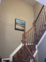 Awsome painting deals this summer . 613-703-0075