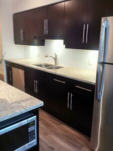 Fully renovated Gorgeous 3 bedroom 2 bath condo downtown!!!