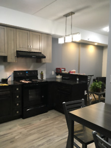 Brand new furnished 1 bedroom air con near U Waterloo July-Aug