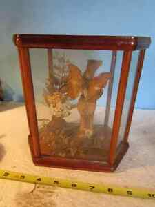 wood and glass decor box with dried flowers and butterfly.