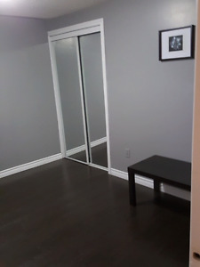 ONE BEDROOM BASEMENT APPARTMENT AVAILABLE IMMEDIATELY