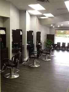 Hair Salon + Barber Shop Service In Cambridge Cambridge Kitchener Area image 1