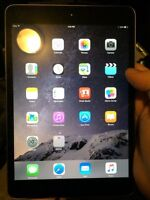 Ipad mini with retinal display (2nd gen)