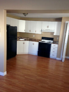 Available Feb 1  one bedroom apt in Elizabeth Park