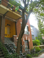 FABULOUS divided condo in sweet spot on Plateau