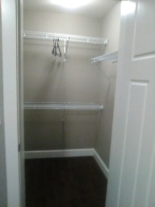 Roommate wanted Coquitlam
