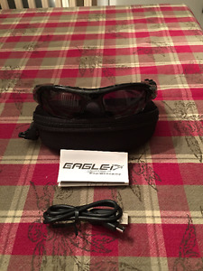 Eagle camera glasses
