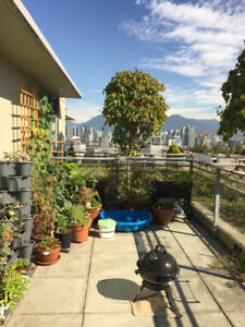 2 bedroom 2 bath penthouse in Mount Pleasant