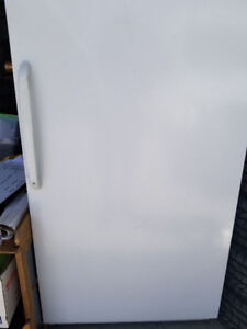 Woods Stand Up Frost Free Freezer