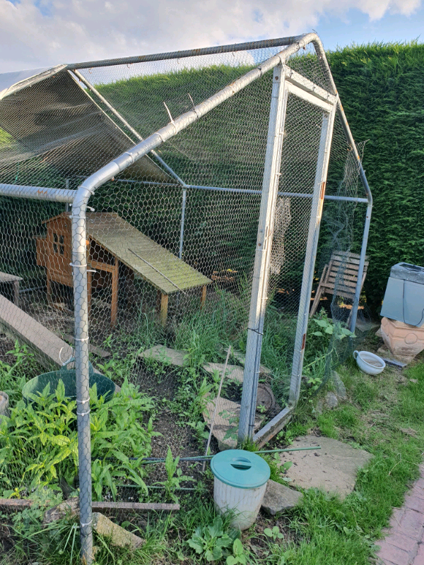 Chicken Run for Hens Dogs Poultry Rabbit Ducks Coop Chickens | in East  Leake, Leicestershire | Gumtree