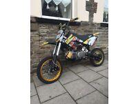 Cw160 pit bike